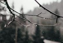 let it snow / cold outdoors // amor por el frío