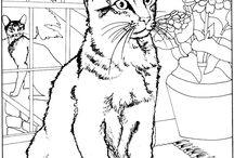 раскраски - коты