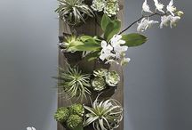 vertical garden mini