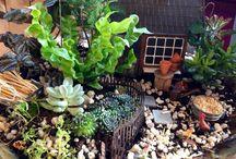 Fairy Garden ~