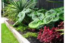 gardens 2
