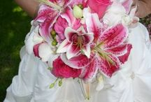 my wedding / by Tina Hall Burke