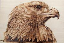 Pyrography Animals & Birds