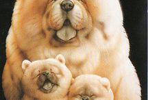 Muramatsu Dogs