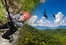 Things to Do in Asheville NC / Things to do in the region of Asheville, NC