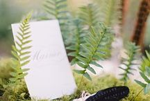 Feather and fern
