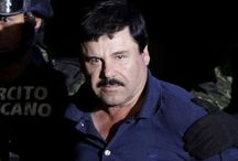 MEXICO DRUG BOSS C H A P O FILES LEGAL CHALLENGE AGAINST EXTRADITION