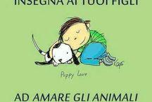 Animali ❤️
