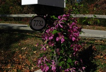 Mailbox Ideas / We love mailboxes...obviously! Here are some of our favorite ideas from around the world.