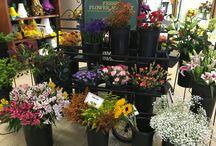 Birthday / Saline Flowerland's Birthday ideas: from flowers to gift baskets