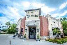 Coffee Tree Oklahoma (Edmond) / Organic Coffee Shop