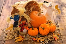 Fall Crafts / by Trina Bolton
