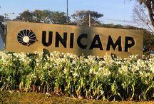 Eventos Unicamp Ano 50 / A Universidade Estadual de Campinas comemora, em 2016, 50 anos de história. Para marcar essa data, serão realizadas, nos seus diversos campi e nas cidades onde estão inseridos, comemorações artísticas, científicas e culturais durante um ano, entre 5 de outubro de 2015 e 5 de outubro de 2016.