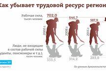 Region29.ru Инфографика