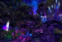 Gärten und Wälder im Film