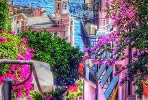 dream of paradise / by Melissa Martinez
