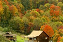 seasons fall / by Diane Boren