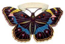 Butterfly / kumpulan kupu-kupu cantik