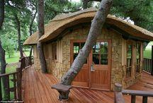 Wood / by Jennifer Daking