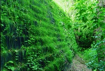 Retaining Wall Applications