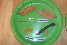 fun for kids / by Kadee Hoyle
