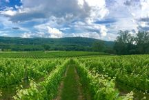 Wineries and Breweries to visit in Warren County NJ