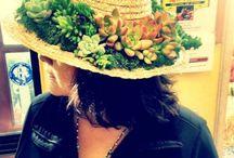 pozsgás kalap, succulent hat / pozsgás kalap, succulent hat