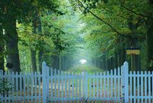 Front gate Osborne road