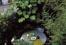 Balcony garden