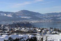 Schöner Wohnen in der Ostschweiz / Die Fleischmann Immobilien AG vermittelt Liegenschaften aller Art. Die Kernmärkte liegen im Kanton Thurgau, am Bodensee sowie an Untersee und Rhein.