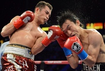 Post Fight Images / by TEC Boxing