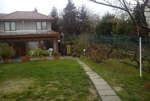 My house and garden