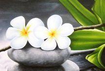 Zen,Buddyzm