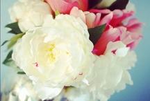 Ramos de Novia / Ramos y flores para la novia