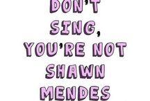 Shawn mendes the best