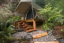 Luxury Camping in the Wild / Orca Dreams Vacations