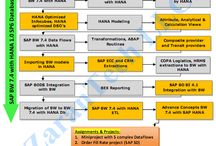 SAP BW on Hana Training / SAP BW on HANA Training provided Online from USA industry expert trainers with real time project experience. Ph: 515-661-4193. Live & Video training.Duration: 60hrs