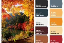 Fall colors / The right paint color can really transform a room, and the way you feel in that room.  Fall color palettes are neutral in nature, so if your home needs some fresh paint, now is a great time to do it!  Neutral fall tones are a go-to for paint colors, so do not be afraid that a warm fall shade is too seasonal! If you need help with paint color selections contact me at rosa@rosadestinteriors.com.