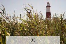 Travel | New England