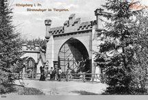 Зоопарк Кенигсберга