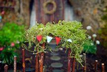 Fairy gardens / by Holly Kennedy