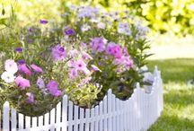 picket fence