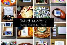 Unit Study   Birds
