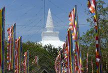 Sri Lanka / Sri Lanka ist ein unglaublich schönes und vielfältiges Reiseland. Ob Kulturreise, Ayurvedakur Familienurlaub oder Aktivferien, Sri Lanka überrascht immer wieder.  Mehr Informationen zu unseren Sri Lanka Reisen finden Sie hier: http://bit.ly/2e7EQyp Und selbstverständlich schneidern wir Ihnen Ihre Traumreise nach Maß - sprechen Sie uns für ein unverbindliches Angebot einfach an: info@vivamundo-reisen.de