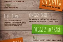 What's for Dinner? / Pet Nutrition / by Longwood Vet Clinic