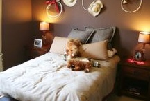 bedroom ideas / by Melody Wadley