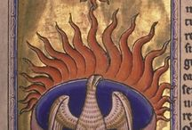 Phoenix / The mythical bird that rises born again out of the ashes.