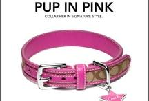 Stuff for my dog Princess
