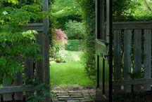 backyard dreaming...