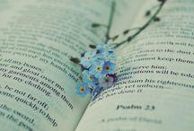 книги / картинки